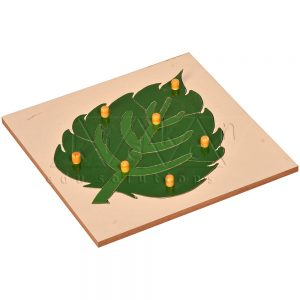 Leaf Puzzle | Montessori Puzzles | Preschool Educational Toys | Kidken Edu Solutions