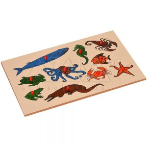 Inset Boards - Animals | Kidken Edu Solutions