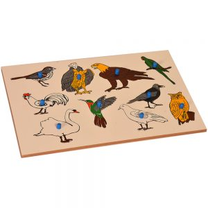 Inset Boards - Birds | Kidken Edu Solutions