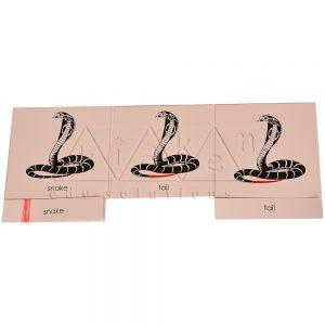 ZCO324-Nomenclature-cards---Snake-