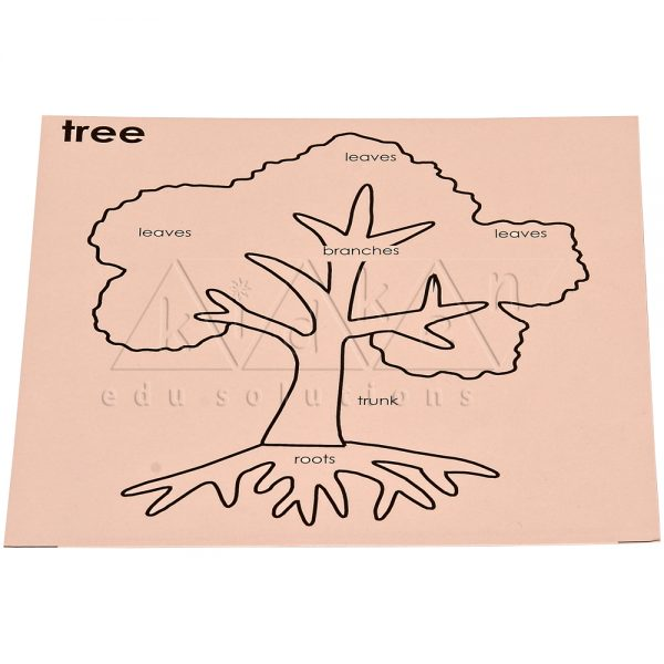 B008Old-code_B008New-code-Control-card-for-Leaf-Puzzle.jpg