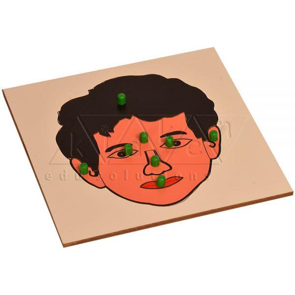 GS122-Puzzle-Parts-of-a-Face-Copy-Copy-Copy-Copy.jpg