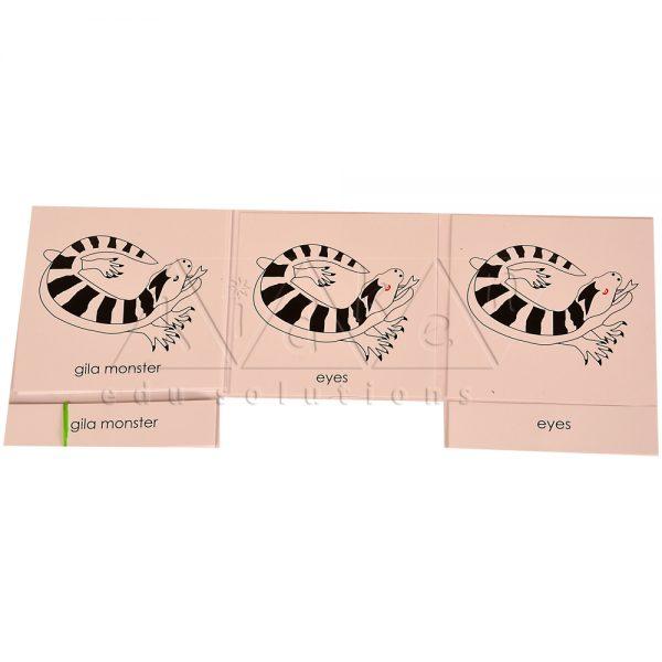 ZC0326-Nomenclature-cards-Gila-monster-.jpg