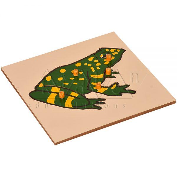 ZW02-Frog-Puzzle-.jpg