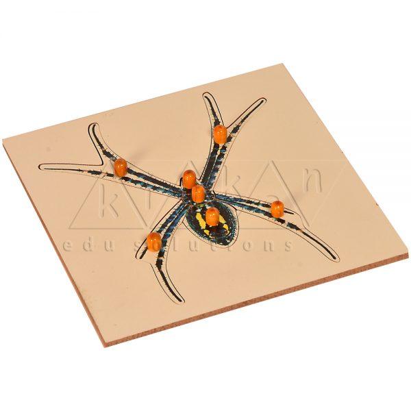 ZW09-Spider-Puzzle-.jpg